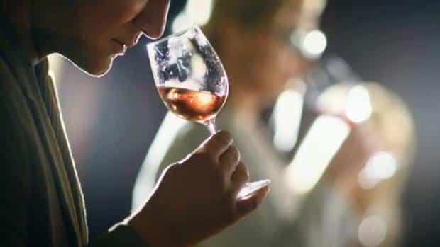 Terminos comunes en la cata de vino